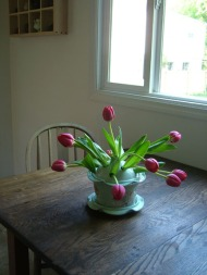 tulip table72